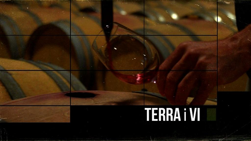 Terra i vi