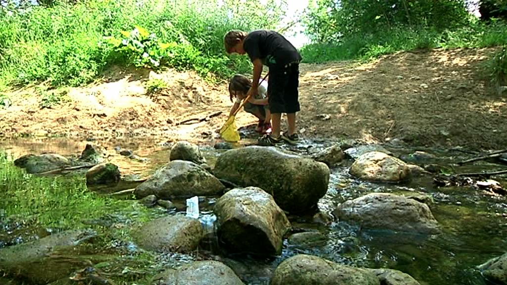 Els Xicots de Vilafranca col·laboren en el Projecte Rius fent tasques de control en una zona del riu Foix prop de La Bleda