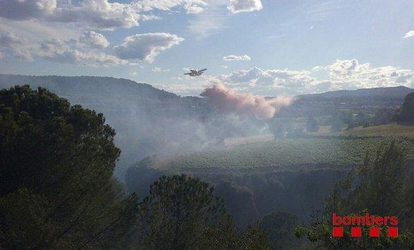 Els bombers treballen en un incendi a la riera de Torrelavit