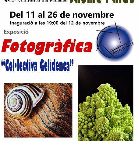 La sala Jaume Palau acull una exposició fotogràfica col·lectiva de Gelida