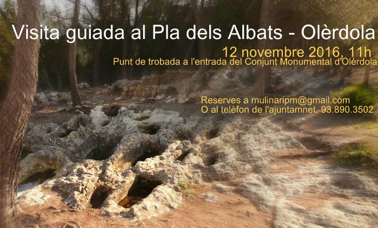Vista guiada gratuïta al Pla dels Albats aquest dissabte 12 de novembre