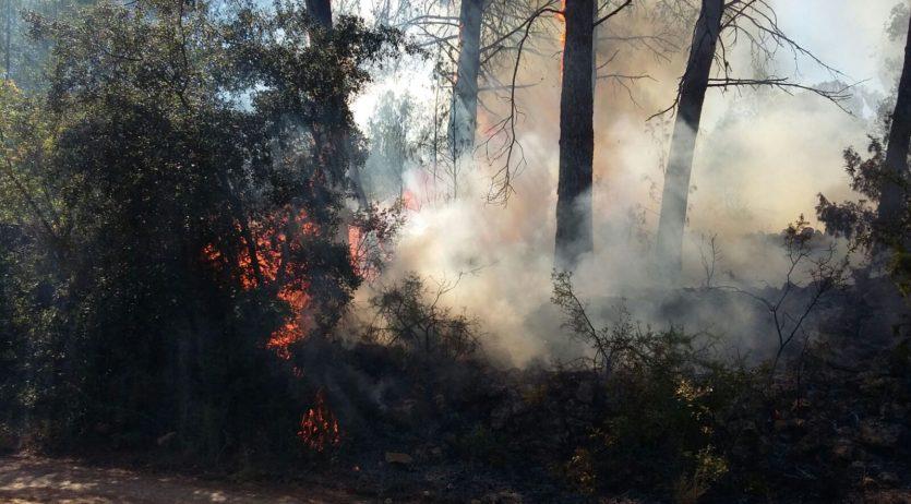 Incendi a Sant Martí Sarroca, en un indret que ja n'ha patit dos més en els darrers mesos