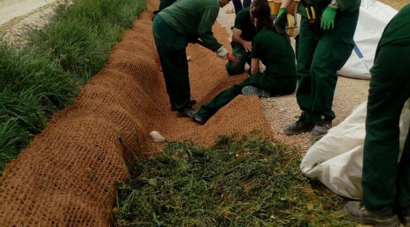 Continuen els projectes de formació i treball per millorar l'entorn natural de Vilafranca