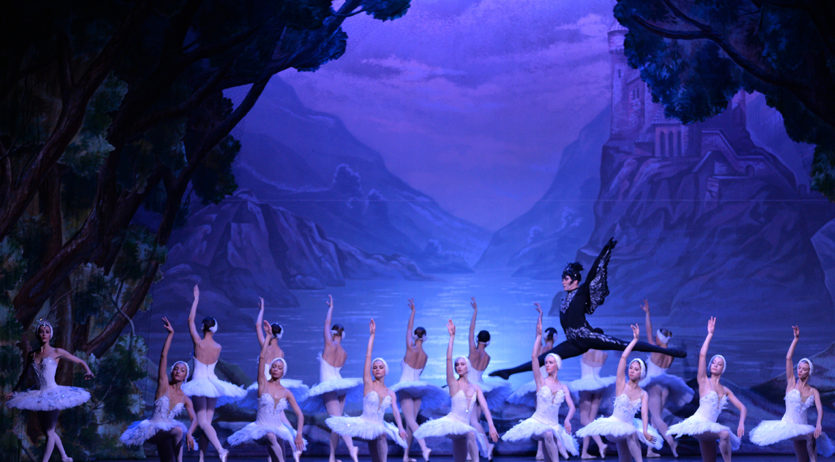 El proper dimecres, 12 de desembre, es podrà veure El llac dels cignes al Teatre Casal