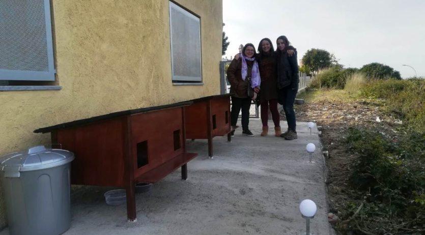 L'Ajuntament i voluntàries realitzen una gestió ètica de colònies de gats a Olèrdola