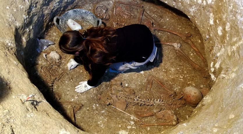 El Vinseum obre les portes a l'excavació arqueològica de les obres d'ampliació