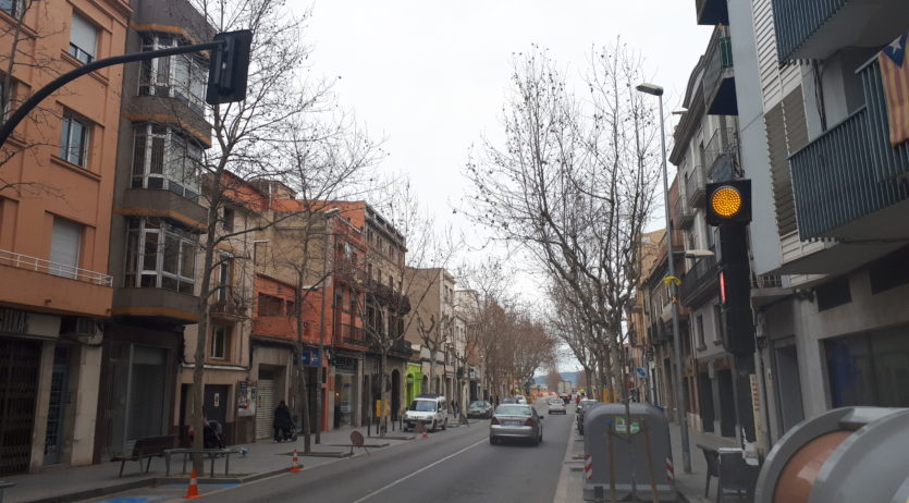 Es fa poda intensiva a arbres de l'avinguda de Barcelona