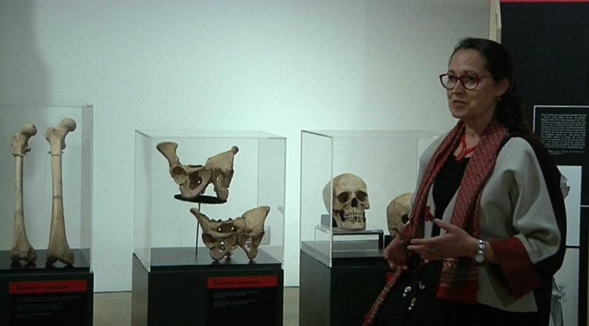 Vinseum inaugura 'Ossos. Un viatge a l'època medieval de la mà de l'antropologia física'
