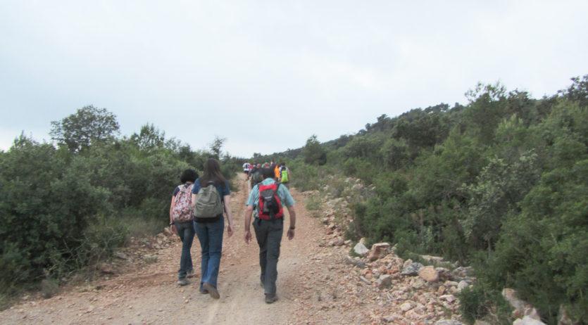 Caminada nocturna al turó de Samuntà organitzada per el Martinet
