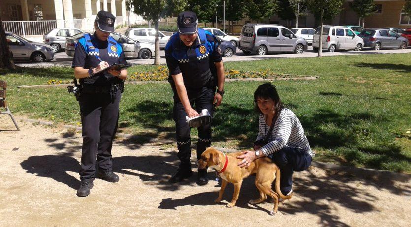 Vilafranca controla el compliment de la normativa per part dels propietaris de gossos