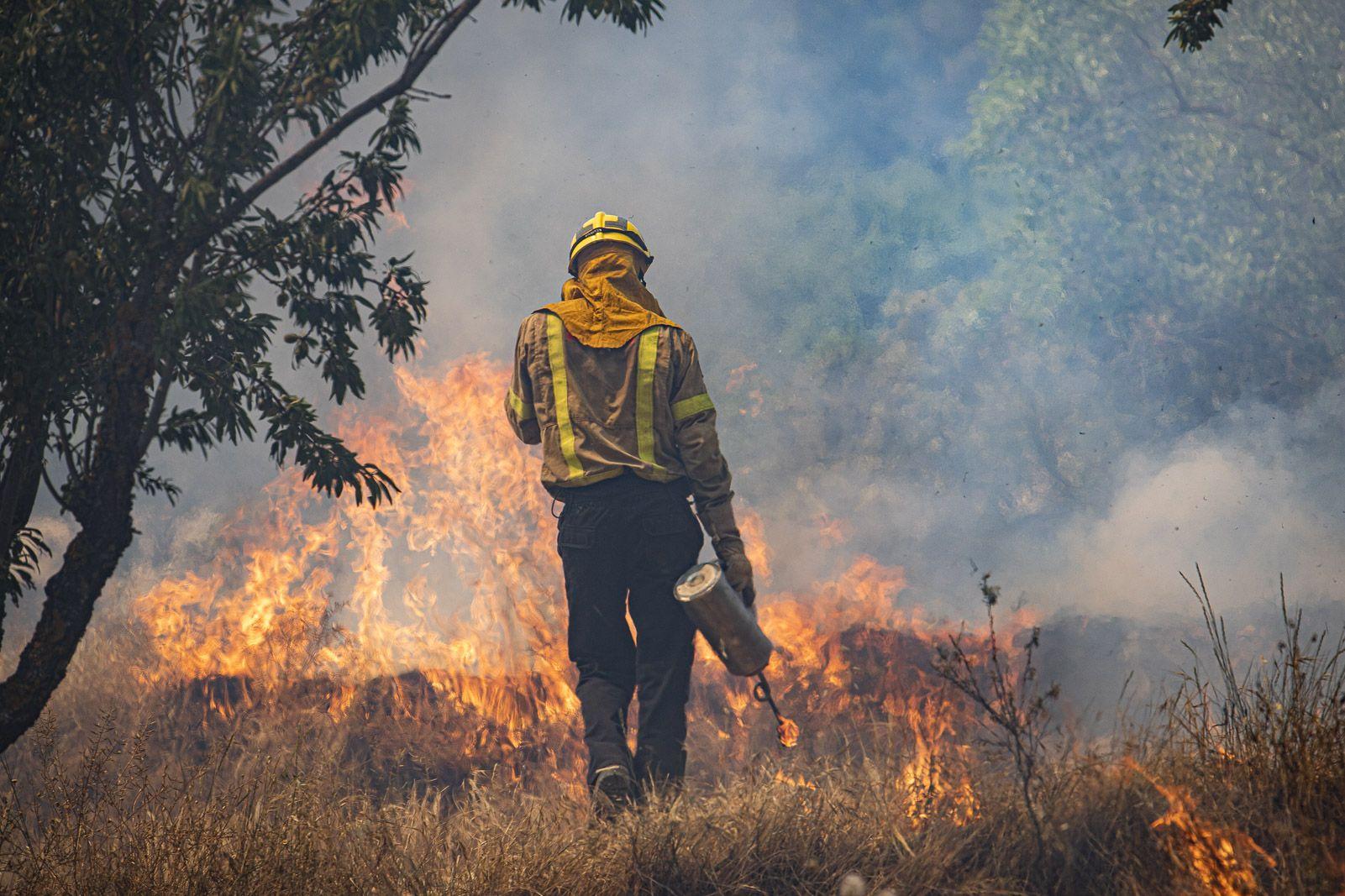 La millor mesura per evitar incendis seria invertir més en…