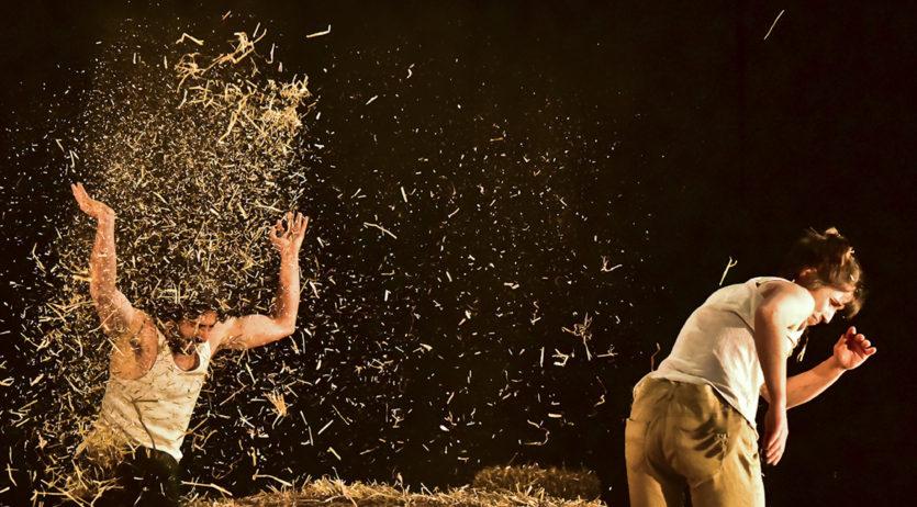 El circ torna a Cal Bolet per les festes de Nadal amb l'espectacle 'Envà'