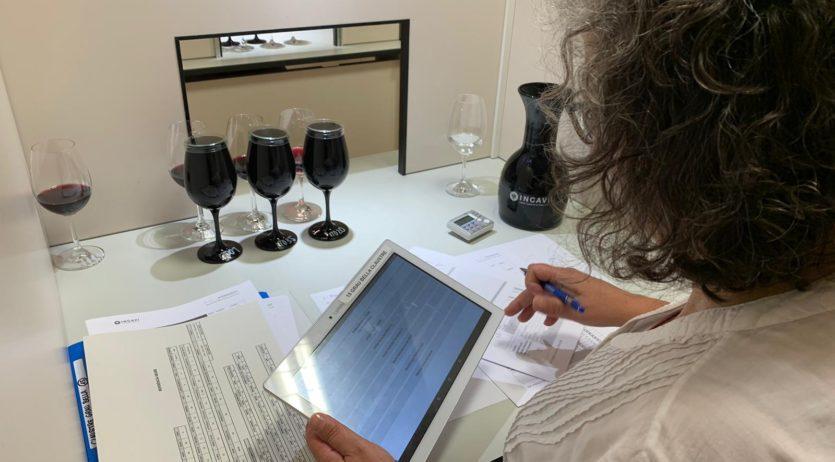 El Panel de Tast de Catalunya tasta 60 vins elaborats amb varietats minoritàries de tot l'estat