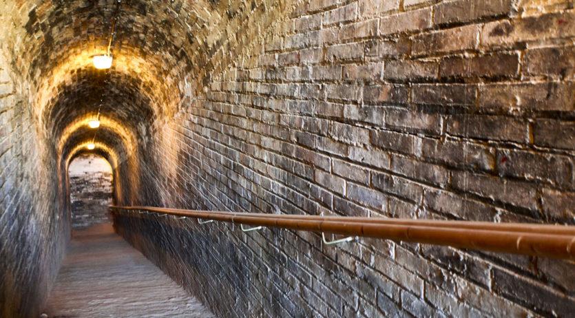 Les visites al CIARGA i al Castell de Penyafort tornen a partir d'aquest cap de setmana