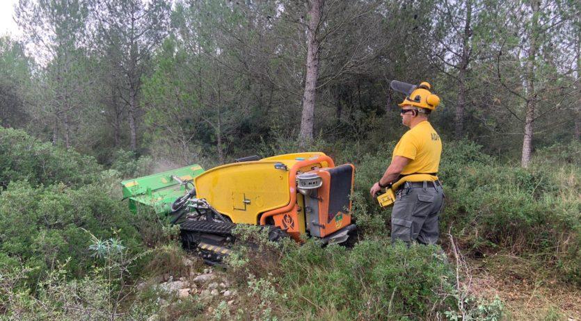 El Consell Comarcal fa tasques de desbrossament al Parc de Foix per implementar la silvopastura