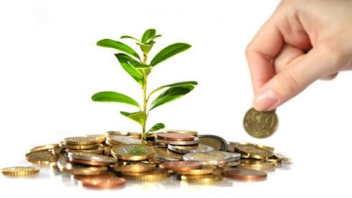L'Ajuntament de Sant Sadurní ofereix subvencions per a empreses i nous autònoms