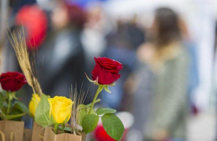 Sant Jordi se celebrarà amb parades de roses i llibres de professionals i diverses activitats