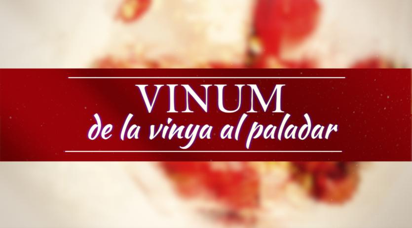 Penedès TV estrena 'Vinum', el nou programa dedicat al món del vi