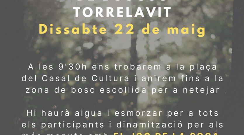 Acció per netejar els boscos de Torrelavit