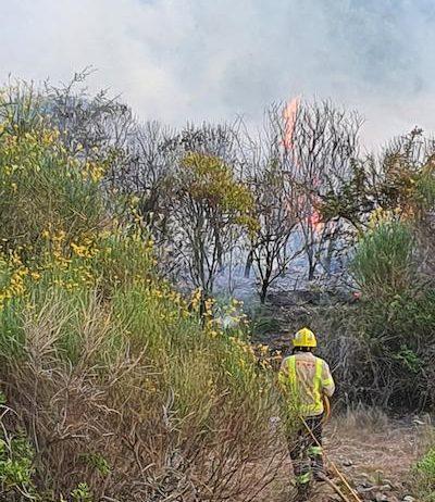 Un incendi al barranc del Fideuer de Sant Sadurní d'Anoia
