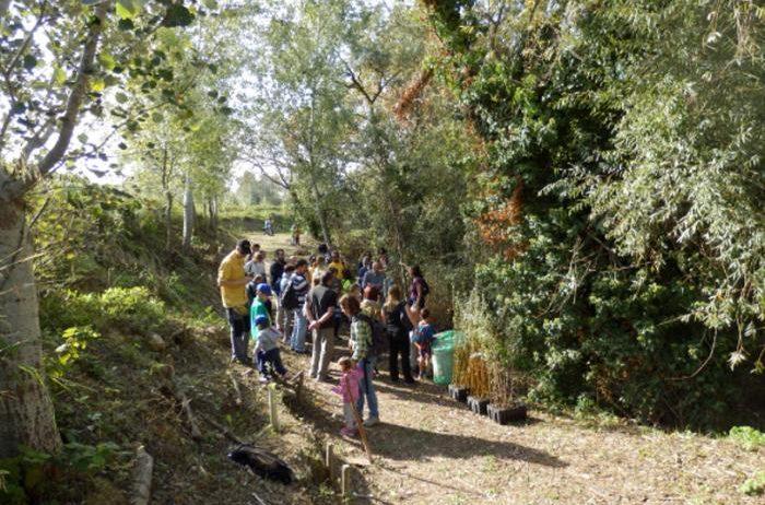 Caminada familiar fins a la Torre de les Aigües aquest diumenge